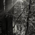 20171022_3463_a6300_Fotokurs_Fluss_ EXT